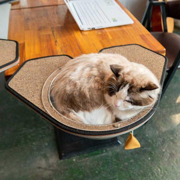 arbre à chat chic - Boutique chien et chat